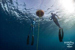 Freediving Instructor Course
