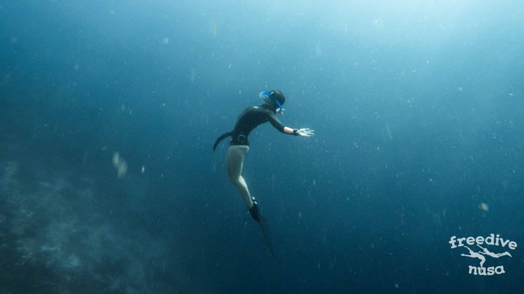 Freedive Safari to Raja Ampat