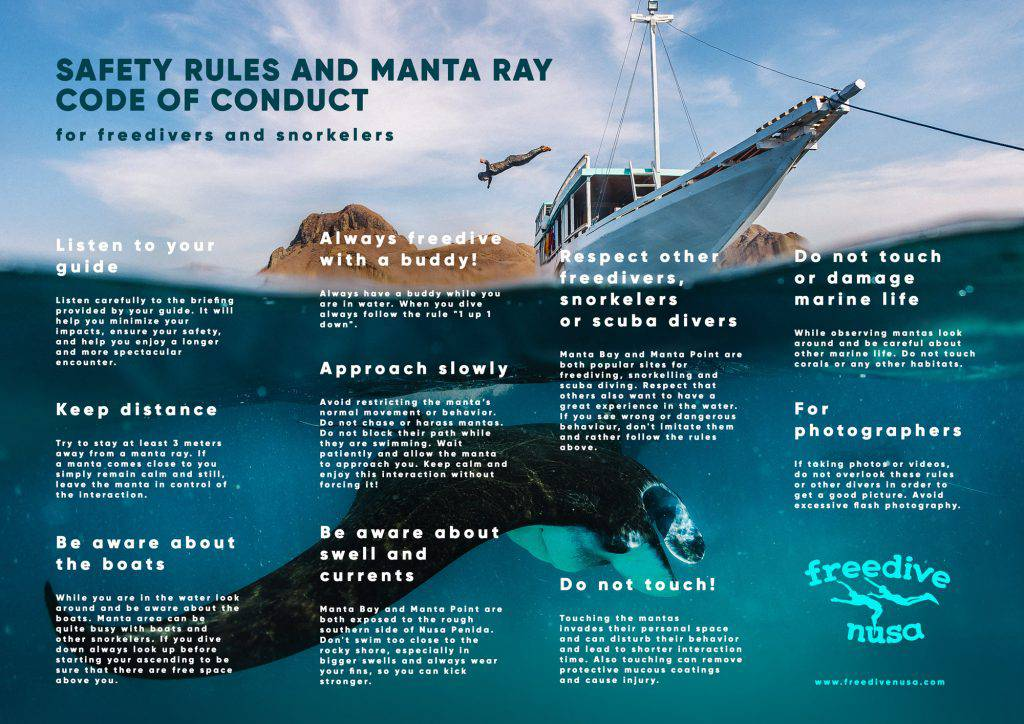 Manta Rays Code of Conduct