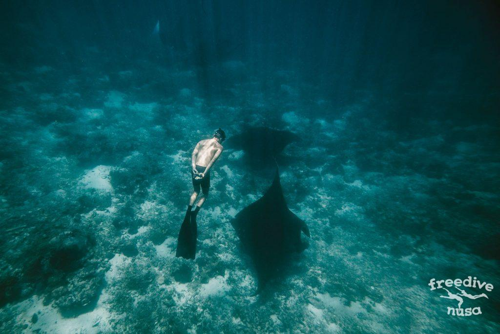 manta point nusa penida snorkeling