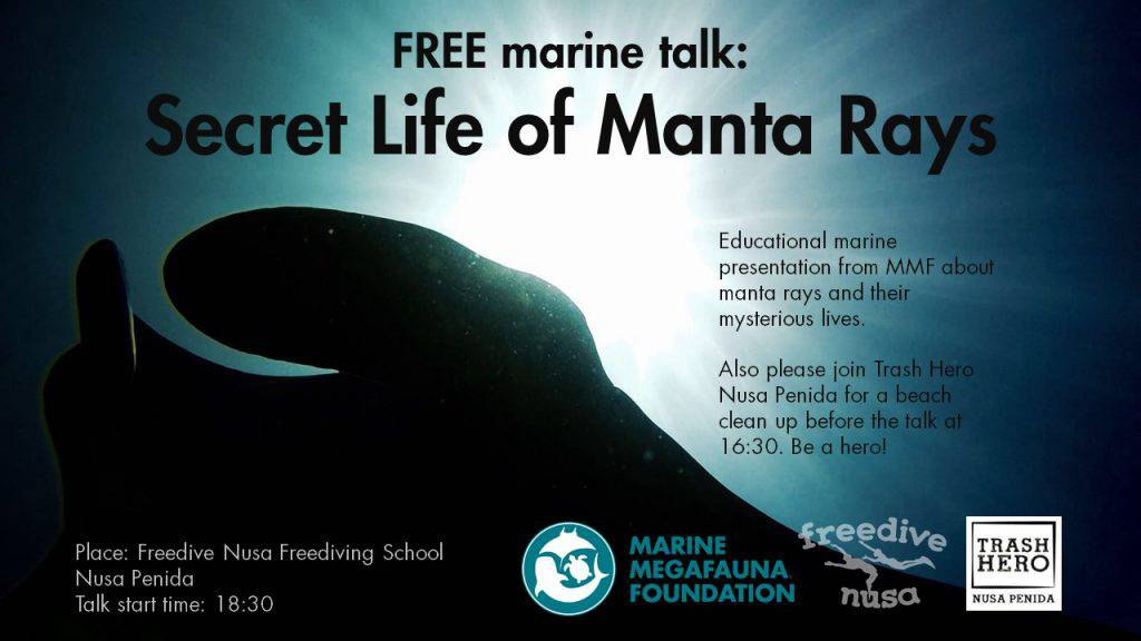 Megafauna Foundation Free Talk